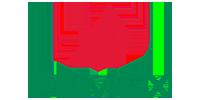 logo-pemex-prolyt